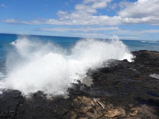 Poipu Shores Resort: Crashing waves near pool
