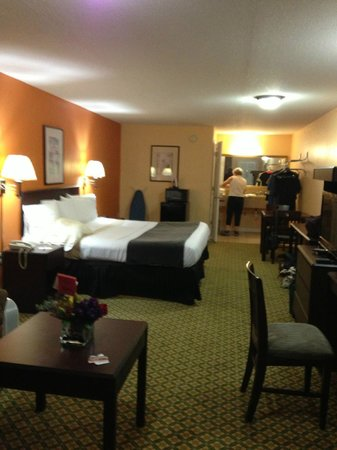 Rodeway Inn Memphis: Single King Room
