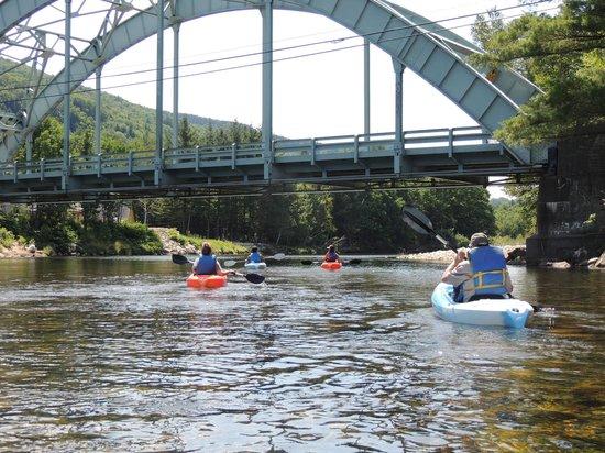 Out Back Kayak: fun!