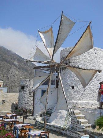El Coral Hotel: Mulini al vento