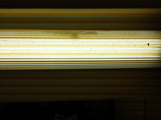 Econo Lodge Inn & Suites - Williamsburg : Light over sink area