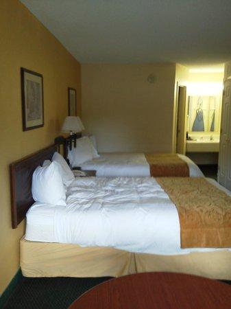Econo Lodge Inn & Suites - Williamsburg: Room.