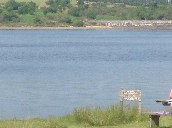 Fernworthy Reservoir view