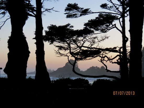 Pacific Sands Beach Resort: sunset through the trees