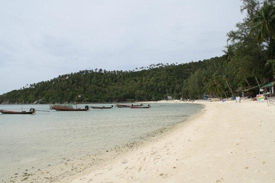 Salad Hut Bungalows: The beach