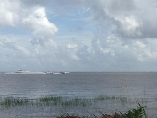 Lake Okeechobee Outpost: boat races from our site