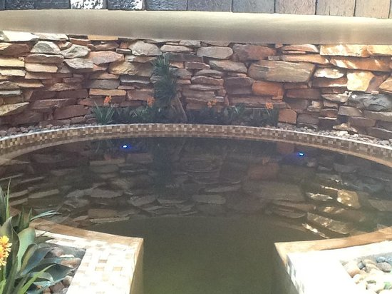 African Pride Mount Grace Country House & Spa: The enclosed hot salt pool