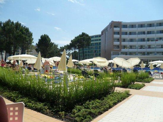 Hotel Riu Helios: Area around pool.