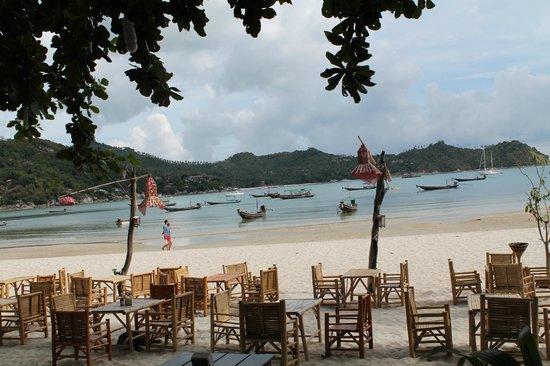 Havana Beach Resort: Strand