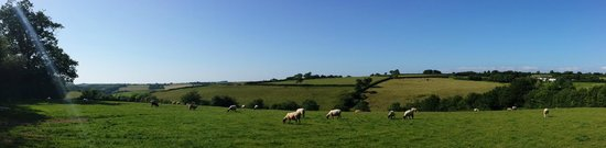 South Coombe Country Cottages: The stunning view we woke to each morning.