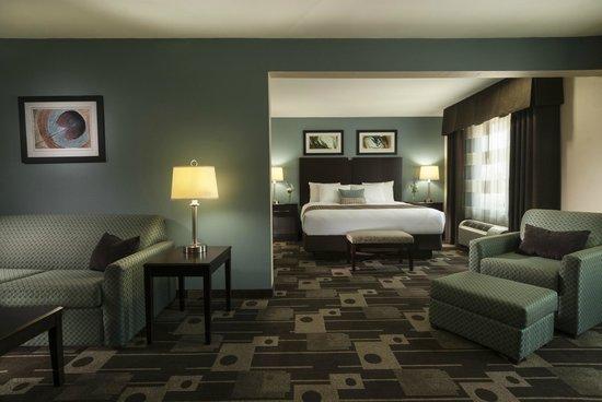 Best Western Plus JFK Inn & Suites: Deluxe King Suite Guest Room