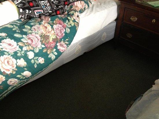 Elizabeth Inn and Convention Center : gross beds