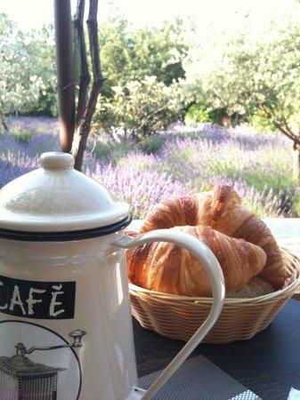 Le Clos des Lavandes : Our breakfast view