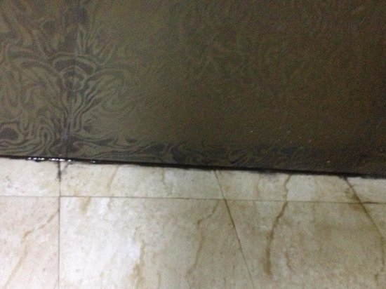 Pearl Grand Hotel: Lovely mouldy bathrooms