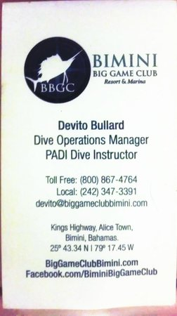 Bimini Big Game Resort and Marina: Devito's Info for scuba at the Big Game Club
