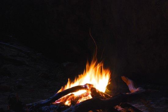 Campi ya Kanzi: Night Fire