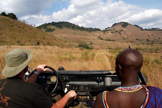 Campi ya Kanzi: Safari