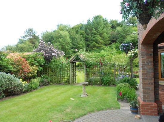 Inglenook Guest House: Una parte del giardino