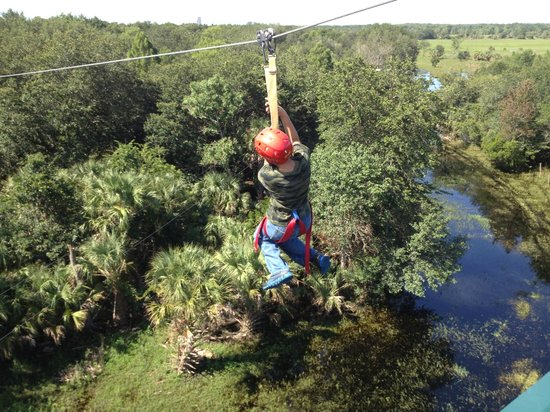 Zip Orlando: Great for those adventurous kids!