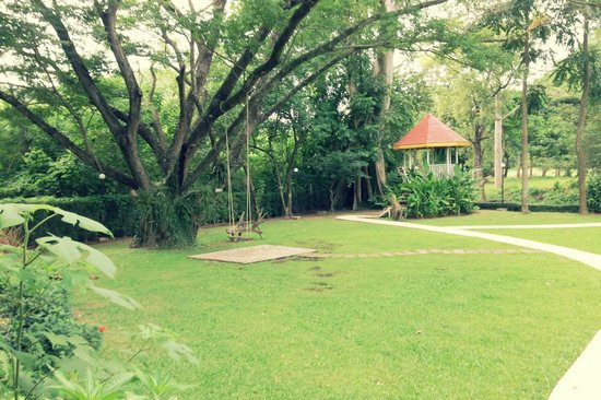 Moosi Yard Hometel Khaoyai: Trees, swing, and gazebo