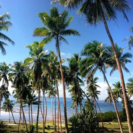 The Remote Resort - Fiji Islands: Coconut Grove along waterfront