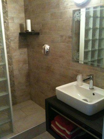 Hotel Restaurant La Terrasse : La salle d'eau