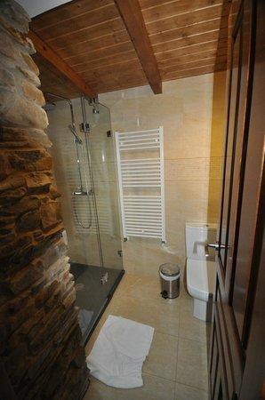 Casona de Llanorrozo: WC y plato de ducha