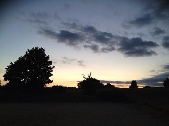 Kingswood Cottage Bed and Breakfast: New Forest Sunset