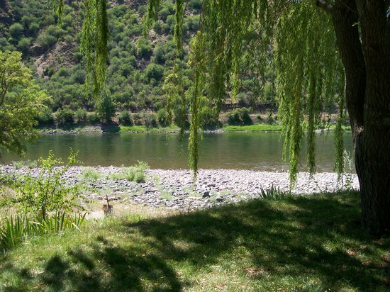 Swiftwater RV Park: Shady Willows at campground edge