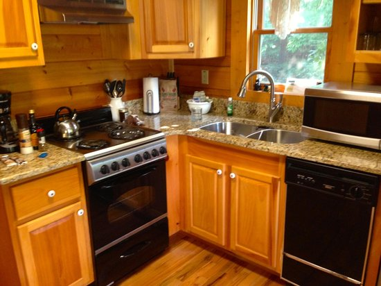 Little Valley Mountain Resort: Small oven and dishwasher, but adequate for a one-bedroom cabin, especially with a grill outside