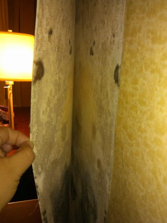 Days Inn & Suites South Boston: More mold