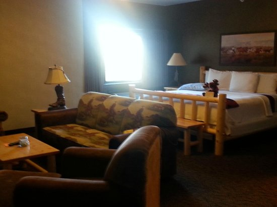 Stoney Creek Hotel & Conference Center - Sioux City: sitting area and king bed