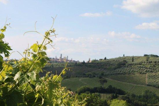 Fattoria Il Piano: View of San Gimignano