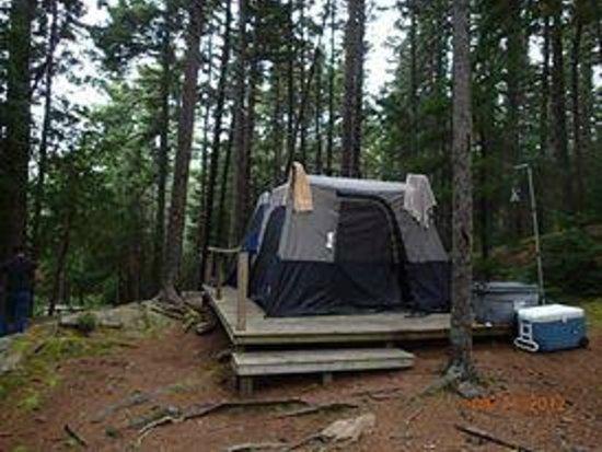 Mount Desert Campground: camping at mount desert
