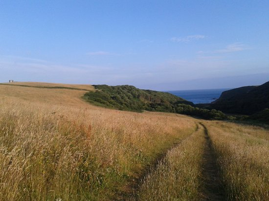 Bed & Breakfast at 1 Coastguard Cottages : the start of the coast path just to the right of the b&b