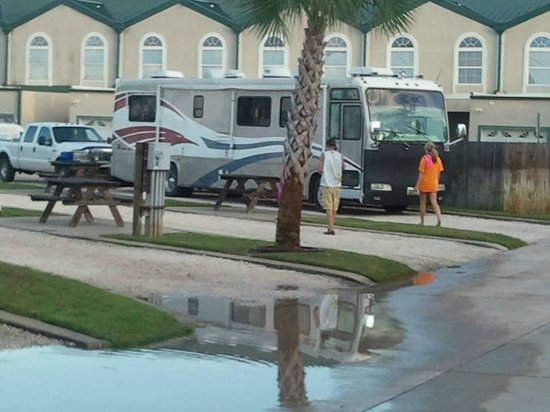 Perdido Cove RV Resort & Marina: All level gravel sites