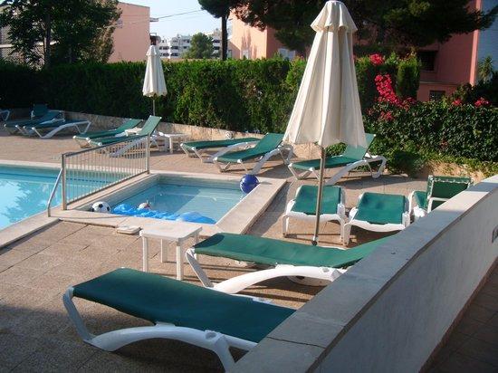 Martha's Apartments: Pool area