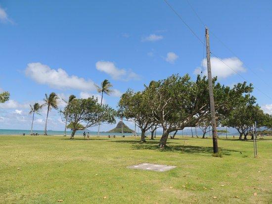 Kualoa Regional Park: Great picnic location