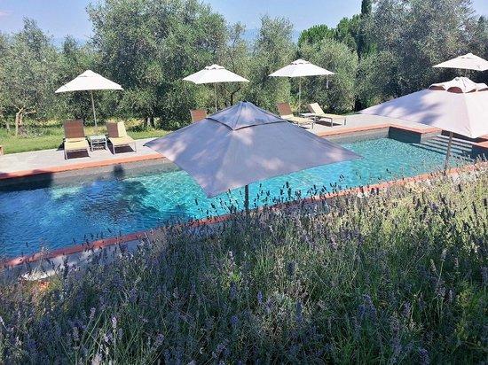 Villa Fontelunga: The new pool area