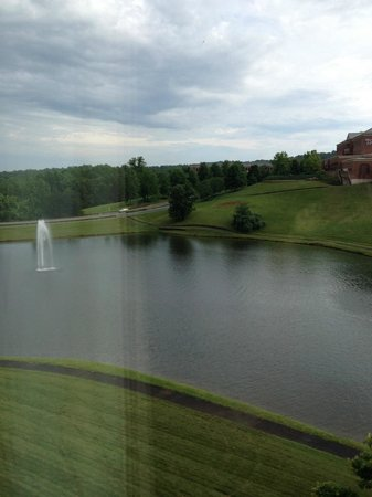 Hilton Garden Inn Charlottesville : View from the room