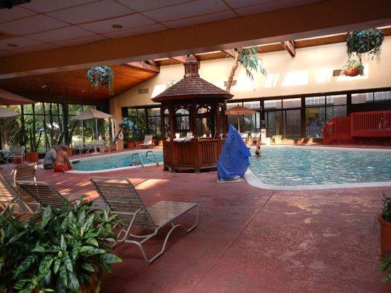 Best Western Braddock Inn: Indoor Pool