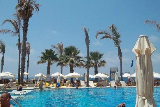 Alexander The Great Beach Hotel: Pool