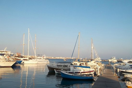 Alexander The Great Beach Hotel: Harbour