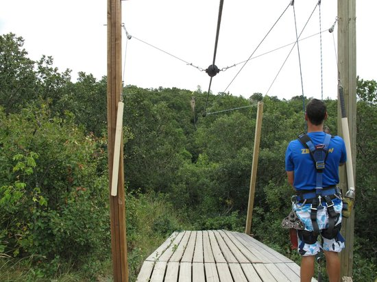 Hy-Wire Zipline Adventures-Day Tours: Coming in for landing