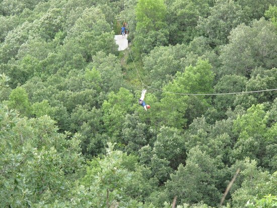 Hy-Wire Zipline Adventures-Day Tours: Acrobatics in the air