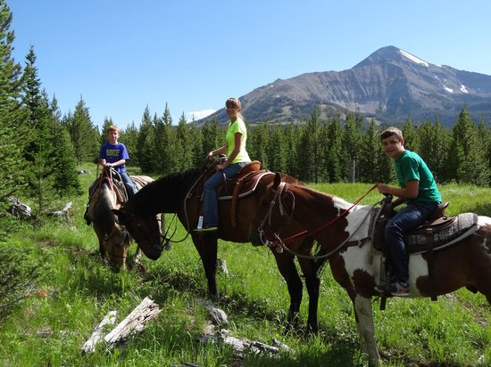 Cedar Mountain Corrals : An amazing day in the hills of Montana!