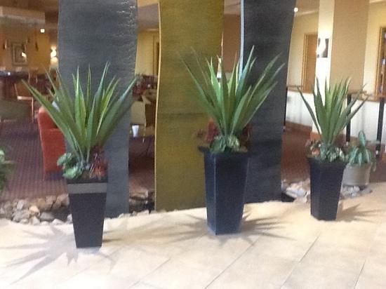 Embassy Suites by Hilton Phoenix-Scottsdale: The Lobby