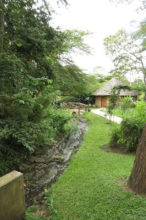 Arumeru River Lodge: Grounds