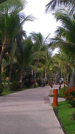 Hotel Barcelo Maya Beach: Grounds crew blocking main walking path
