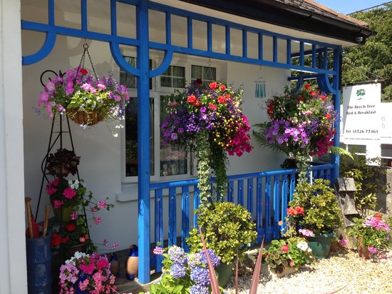 The Beech Tree Guest House: Hanging  Baskets